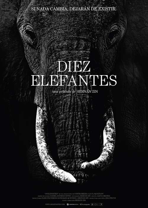 10 elefantes